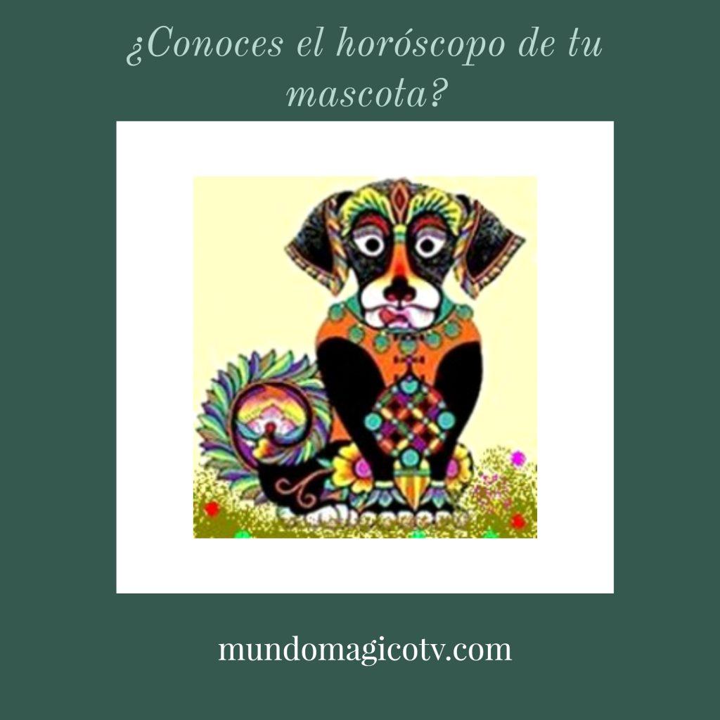 horoscopo-de-mascotas-1024x1024